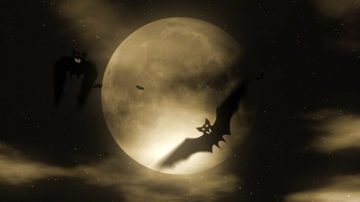 'Bat Attack 2' - Halloween Party Motion Background Loop_SampleStill