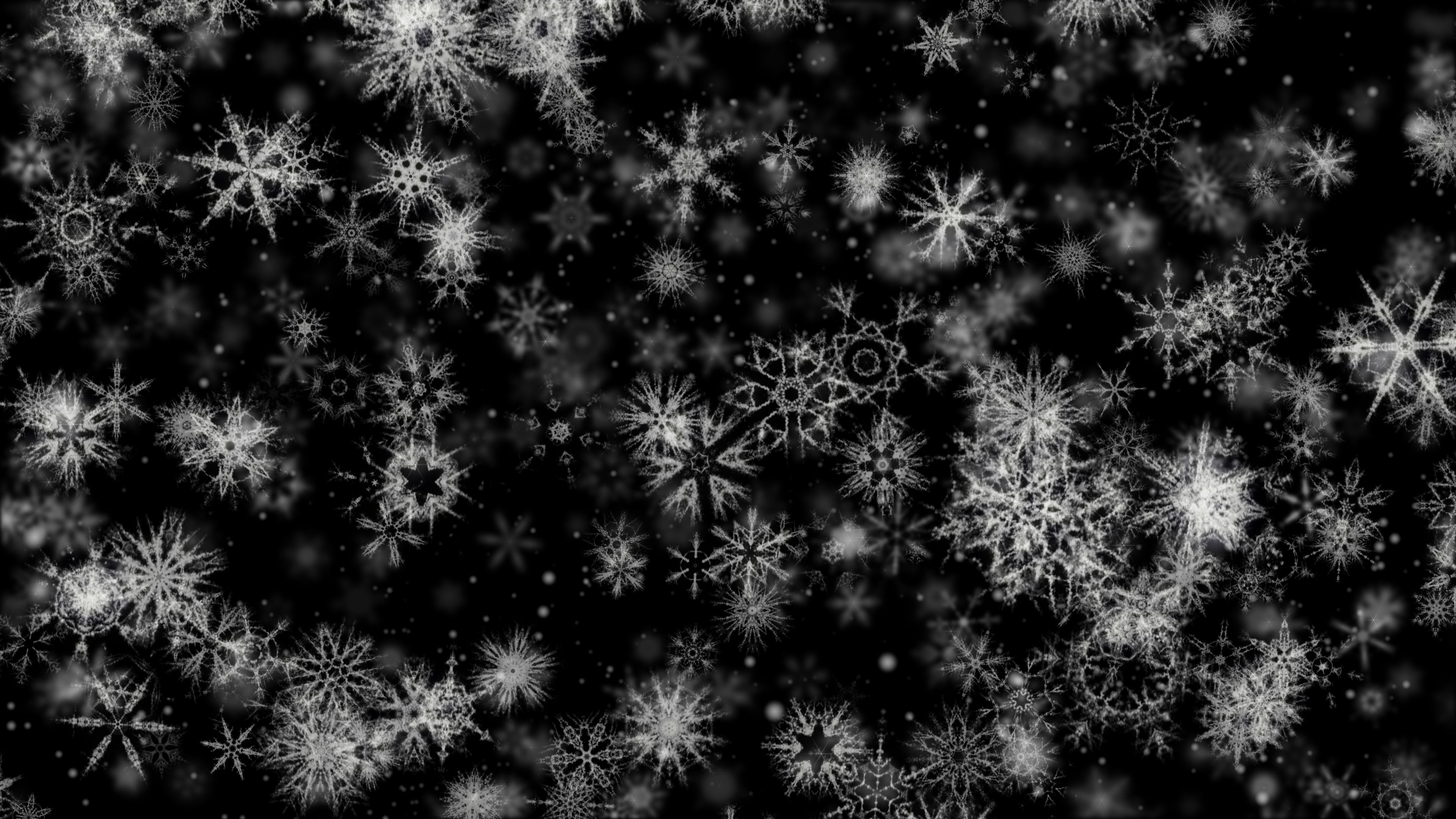 'Pretty Snow 4' - Black BG Winter Motion Background Loop-SampleStill